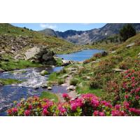 lakes Tristaina
